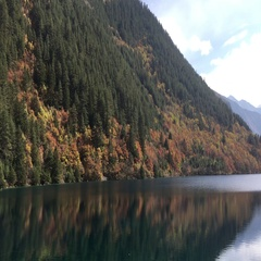 Rhinoceros  lake at Jiuzhaigou National Park in Sichuan China Stock Footage