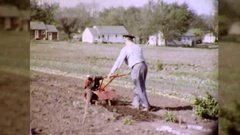 Man Plows Vegetable Organic Garden Rototiller 60s Vintage Film Home Movie  Stock Footage
