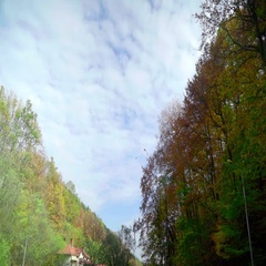 Leaves falling. Autumn somewhere deep in the mountain. Stock Footage
