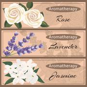 Aromatherapy set collection. Rose, lavender, jasmine Stock Illustration