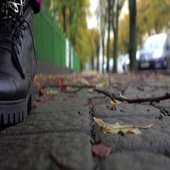 Slow motion: standing shoes. Autumn alley with fallen branches and leaves. Women Stock Footage