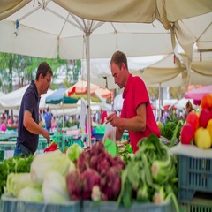 Picking vegetables on the Central Market Stock Footage