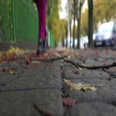 Slow motion. Autumn alley with fallen branches and leaves. Women walk forward Stock Footage