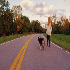 Young woman with long hair running with his dog on the road in the park. Keep a Stock Footage