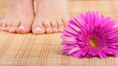 Beautiful well-groomed feet with pedicure and pink flower. Focus on flower Stock Photos
