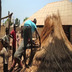 Man and children building a roff made of straws  - Guinea Africa Stock Footage