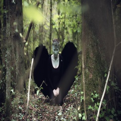 4k Halloween Dark Angel Woman with Black Wings in Forest Shouting to Sky Stock Footage