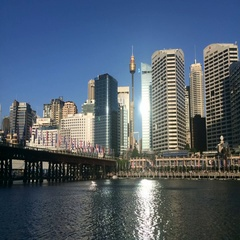 Timelapse Darling Harbour at dusk in Sydney Australia Stock Footage