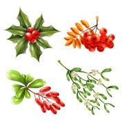 Christmas Berry Branches Set Stock Illustration