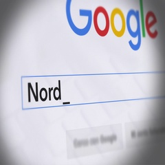 Google Search Engine - Search For Nordic diet Stock Footage