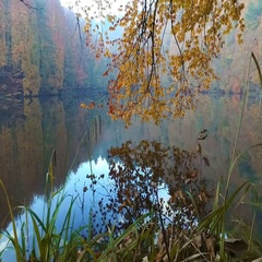 Lake with Reflection in Yedigoller Stock Footage
