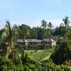 Wailea Maui residential area with palm trees. Stock Footage