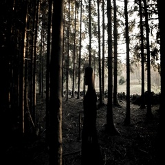 Horror scene. Woman in long black dress walking through the forest Stock Footage