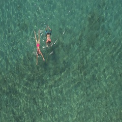 AERIAL: Smiling young couple swimming in the ocean towards beautiful wild beach Stock Footage