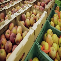 Fresh fruit at a stall. Apples in boxes in supermarket Stock Footage