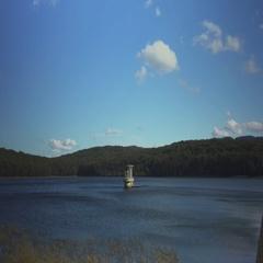 Olinda silvan reservoir  Stock Footage