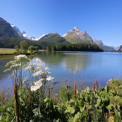 Clear Silvaplanersee with Swiss Alps in the background, Switzerland Stock Footage