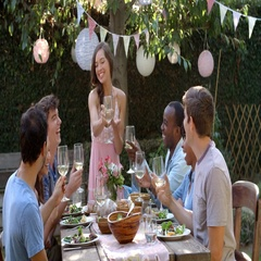 Friends Making A Toast At Outdoor Backyard Party Stock Footage
