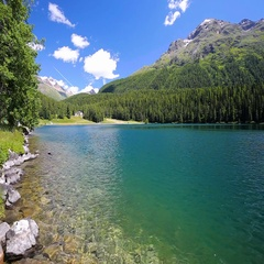 Walking path along Sankt Moritzersee with green forest and Swiss Alps. Stock Footage