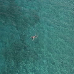 AERIAL: Woman snorkeling and diving in gorgeous ocean on sunny summer day Stock Footage