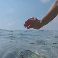 HALF IN HALF OUT UNDERWATER: Unrecognizable person scooping clear ocean water Stock Footage