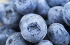 Ripe berries blueberry Stock Photos