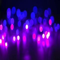 Defocused lights deep purple and violet Stock Footage