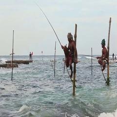 Sri Lanka Fishermen Sea Shore Stock Footage