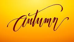 Autumn lettering Stock Illustration
