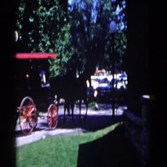 1958: horse and buggy ride around town. FRENCH LICK, INDIANA Stock Footage