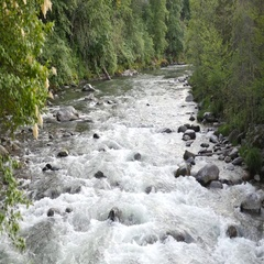 River with Rapids. 4k Footage. Hood River, Oregon Stock Footage