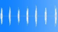 Snow bunting. Arctic voice Sound Effect