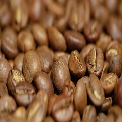 Large quantity of high quality coffee beans Stock Footage