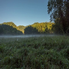 4K TL Low Angle View of Fog Over Field Stock Footage