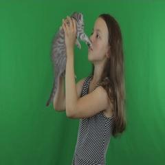 Beautiful girl communicates with kitten Scottish Fold on Green Screen stock Stock Footage