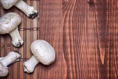 Freshly picked champignon mushrooms Stock Photos