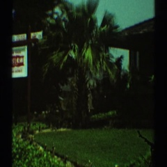 1969: the premises of a house with amazingly beautiful greenery LOS ANGELES Stock Footage