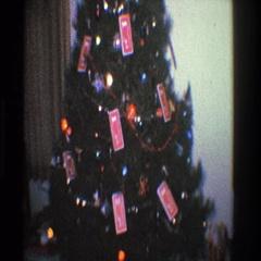 1968: lonely little christmas tree. TOLEDO OHIO Stock Footage