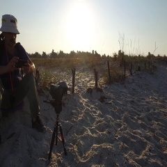 Man photographer with camera sitting on beach early in morning Stock Footage