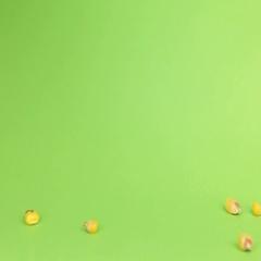 Falling grains corn on heap of corn on a green screen Stock Footage
