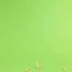 Falling grains oats on heap of oats on a green screen Stock Footage