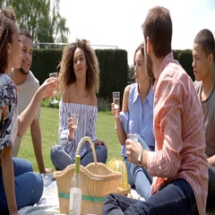 Young adult friends at a picnic drinking and talking Stock Footage