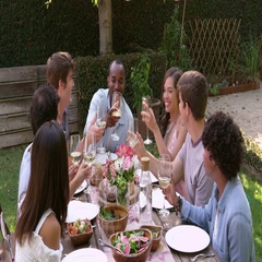 Friends Making A Toast At Outdoor Backyard Party Shot On R3D Stock Footage