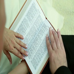Yong bride and groom sitting in the park and reading the book Stock Footage