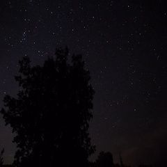 A stary night in southern Ontario Stock Footage