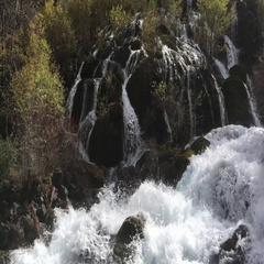 Pearl Shoal Waterfall at Jiuzhaigou National Park , China Stock Footage