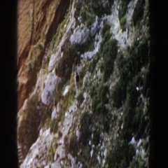 1960: several people walking along a trail in a rocky area with lots of trees. Stock Footage
