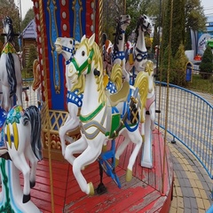 Old fashioned carousel horses in autumn park. Steadicam shot. Stock Footage