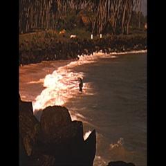 Vintage 16mm film, 1958 Ceylon, fisherman on poles, pan 2-shot Stock Footage