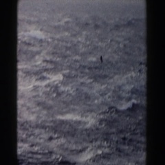 1959: very large, scary wave on the ocean. Stock Footage